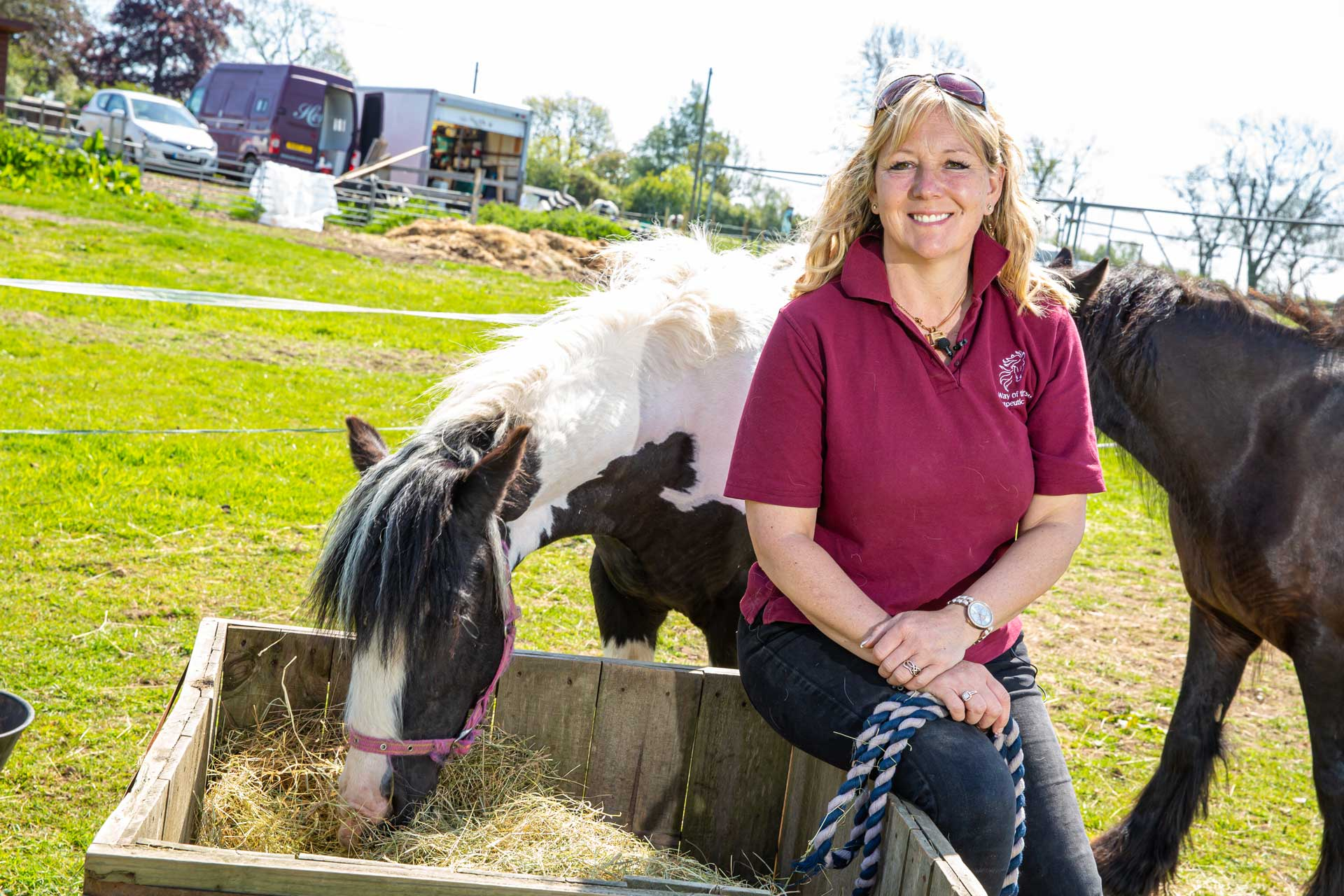 Equine Therapy Leicestershire
